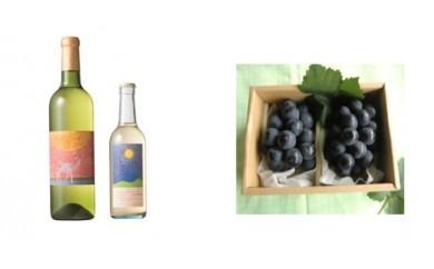 B-30 安心院*小さなワイン工房ワイン(白・デラウエア)&ぶどう14【季節限定】