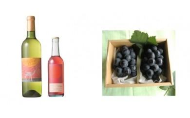 B-29 安心院*小さなワイン工房ワイン(白・マスカットベリーA)&ぶどう13【季節限定】