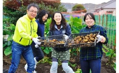 【A20】館山の恵みたっぷり実感!農作業体験ペアチケット