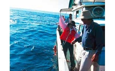オプションF(船釣り体験)のみ希望 1000pt