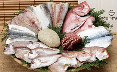 TN07 旬の大漁おまかせセット【60pt】