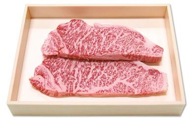 UG01 長崎和牛 サーロインステーキ【40pt】