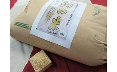長野県飯山市返礼品幻の米