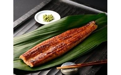 G-007 楠田の極うなぎ蒲焼(大隅産)40尾セット