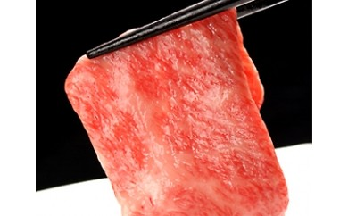 飛騨牛最高級5等級サーロイン本格すき焼き用厚切り600gお届けします![H0001]