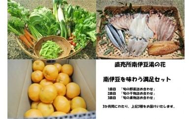 [Da-02]南伊豆を味わう満足セット[3か月定期便]