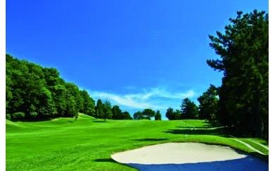 N1003ふるさとゴルフ平日1組セルフプレー券