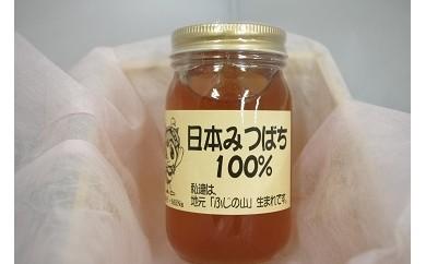 富士の恵み日本みつばち純度100%ハチミツA