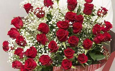 [№5691-0140]赤バラの花束 36本「ロマンチックな瞬間」