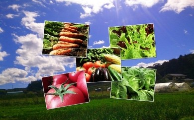 [№5865-0001]くさぶえ農園の季節の野菜セット