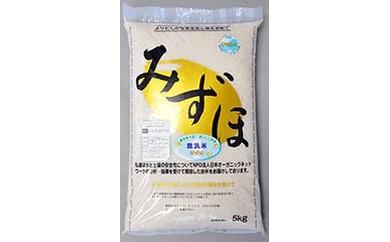 茨城県産無洗米コシヒカリ 10kg