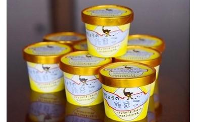 【自家生産ダチョウの卵を使用!】だちょうのたまごアイスクリーム 朝日町健康工房ロイフェン