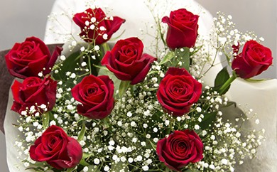 [№5691-0138]赤バラの花束 10本「あなたは全てが完璧」