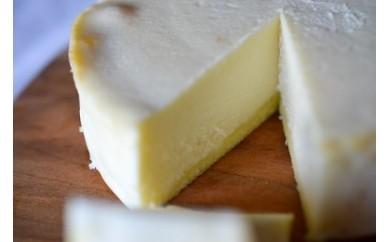 L004 白と黒のチーズケーキセット【420p】