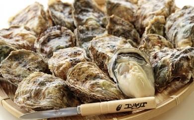 [№5863-0029]厚岸産殻牡蠣Lサイズ20個セット