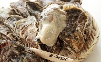 [№5863-0030]厚岸産殻牡蠣LLサイズ15個セット