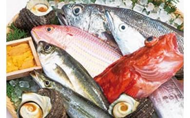 【C】うすき豊後水道物語 豊後水道うすき地魚詰め合わせA