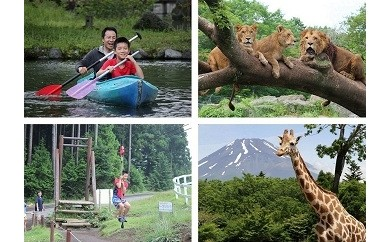 富士山こどもの国おとな入園券&富士サファリパーク入園券(各2枚)