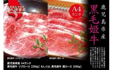 B-113 鹿児島県産(A4) 黒毛姫牛