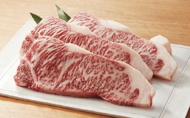 【57E006】飛騨牛サーロインステーキ用
