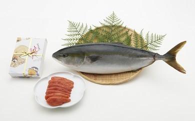 701.九州産鮮魚まるごと1匹と明太子のセット