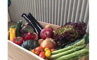107.旬の野菜