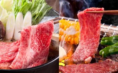 [№5644-0157]飛騨牛A5等級 すき焼き・しゃぶしゃぶ用と焼肉用 約900g(ロース又は肩ロース)