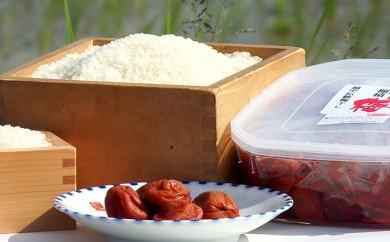 [№5684-0114]梅干し お米(10kg)付き!