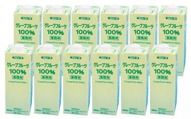 [№5719-0037]めいらく業務用100%果汁(グレープフルーツ)