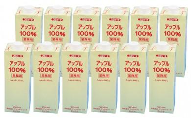 [№5719-0036]めいらく業務用100%果汁(アップル)