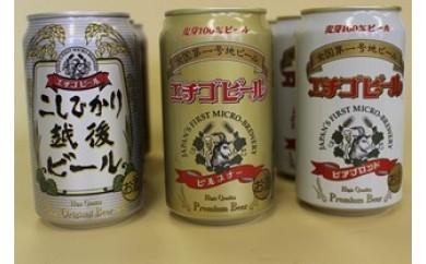 【D19】エチゴビールベストセレクション
