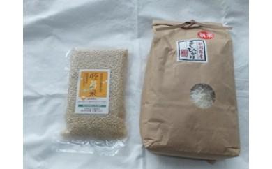 【D29】こしひかり白米、健康胚芽米セット