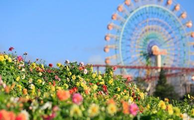 [№5812-0035]富士 花めぐりの里&遊園地ぐりんぱ入園セット券 4枚