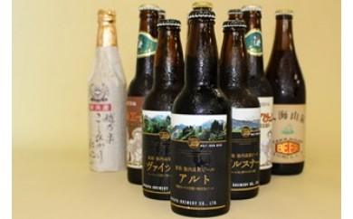 【E23】クラフトビール11本セット