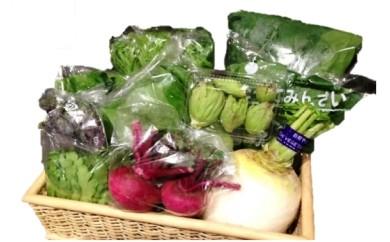 C-3 季節の野菜セット(6ヵ月分)