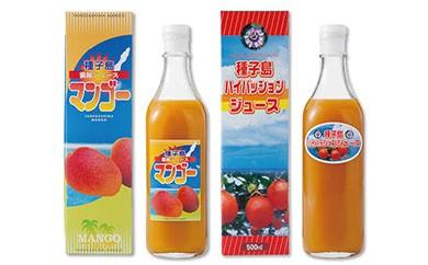 【N024】菓心利休 パッション・マンゴージュースセット【10,000pt】