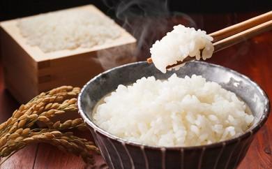 [№5862-0033]かめいさんちの契約栽培米 10kg