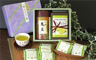 菊之園七宗 特選! ラングドシャ・美濃白川茶1缶詰合せ