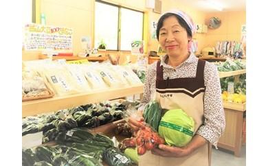 408*さんさん市場 やさい名人がチョイスする新鮮季節の野菜2回セット