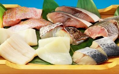 A301 ボリュームアップ!!玄界灘産 旬のお魚8種 切り身セット