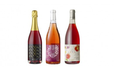 [№5657-0125]キャンベル スパークリングワイン・はなやぐ・鎧塚 3本セット