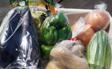 AM02 季節の野菜詰め合わせ【25pt】