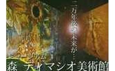 36 太陽の森ディマシオ美術館 入館招待券(往復ハイヤー付) 60,000円