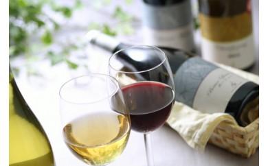 [№5657-0122]キャンベル スパークリングワイン・ナイアガラ 2本セット