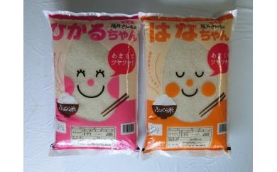 116 福井米コシヒカリ「ひかるちゃん」と福井米ハナエチゼン「はなちゃん」のセット