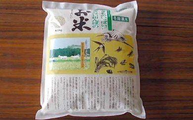 1006801_耕さない田んぼのお米【玄米】