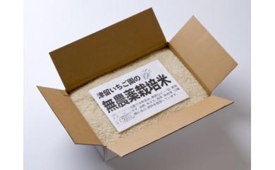 38.無農薬米「ひのひかり」<6kg>※11月~発送予定