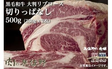 B110 黒毛和牛ロース(大判)切りっぱなし250g×2