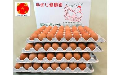 No.026 あおい海・みどりの里 九十九里ファームこだわりたまご160個 / 卵 タマゴ 玉子 新鮮 千葉県 人気