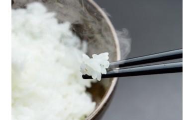 3-C 藤川農産 会津コシヒカリ 白米5kg×2袋(新米・特別栽培米)